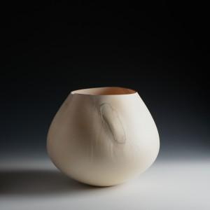 Liam Flynn, Sycamore Vessel 6, C14, 28 x 35 cm high res